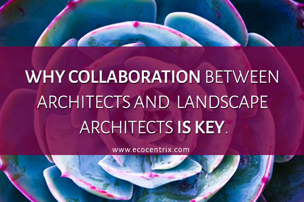 WHY COLLABORATION BETWEEN ARCHITECTS AND LANDSCAPE ARCHITECTS IS KEY