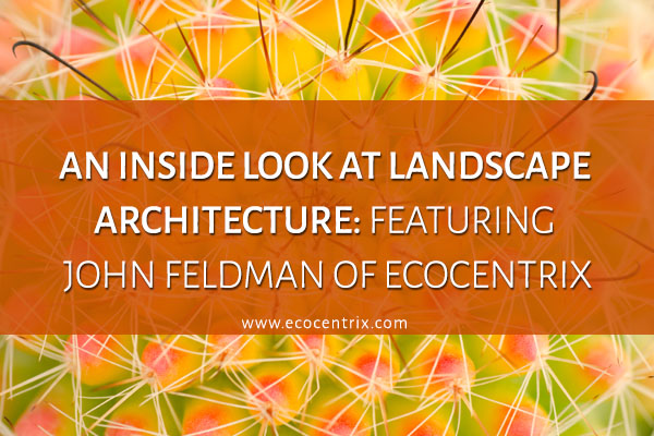 AN INSIDE LOOK AT LANDSCAPE ARCHITECTURE- FEATURING JOHN FELDMAN OF ECOCENTRIX